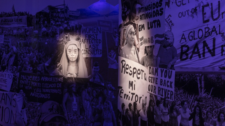 Photo collage of protests highlights women as healers, providers, and protectors