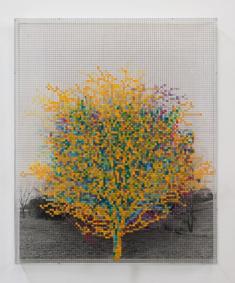 at150226NumberTrees-RobertWedemeyer.jpg
