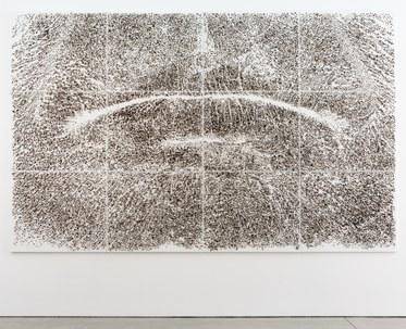 Giuseppe Penone, Spine d'acacia-Contatto, aprile 2006, 2006Canvas, acrylic, glass microspheres, acacia thorns118 1/2 x 189 1/2 x 2 inches, (301 x 481.3 x 5.1 cm)