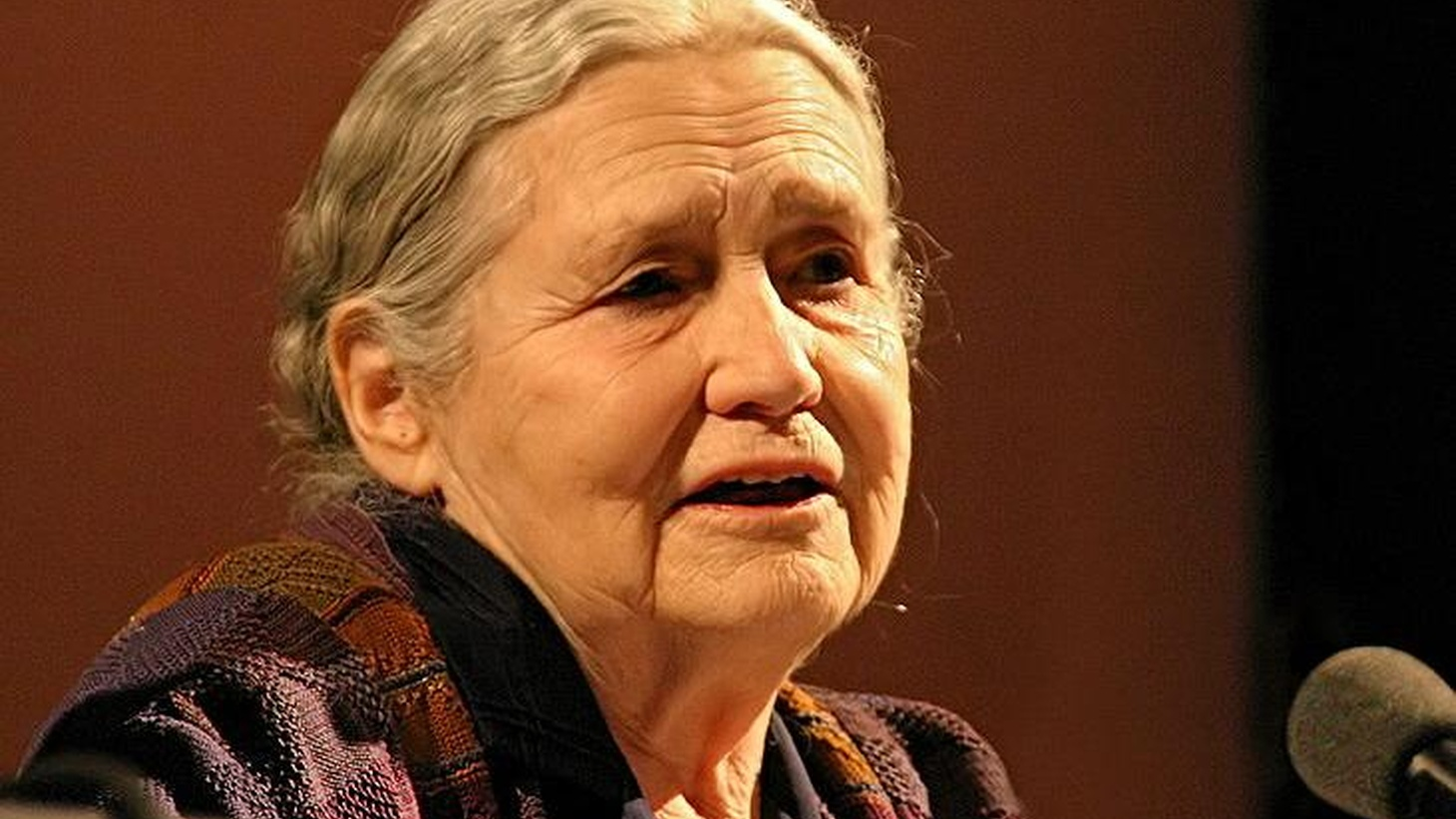 Doris Lessing, one of our most sage and canny living writers discusses the real stories behind her fiction....