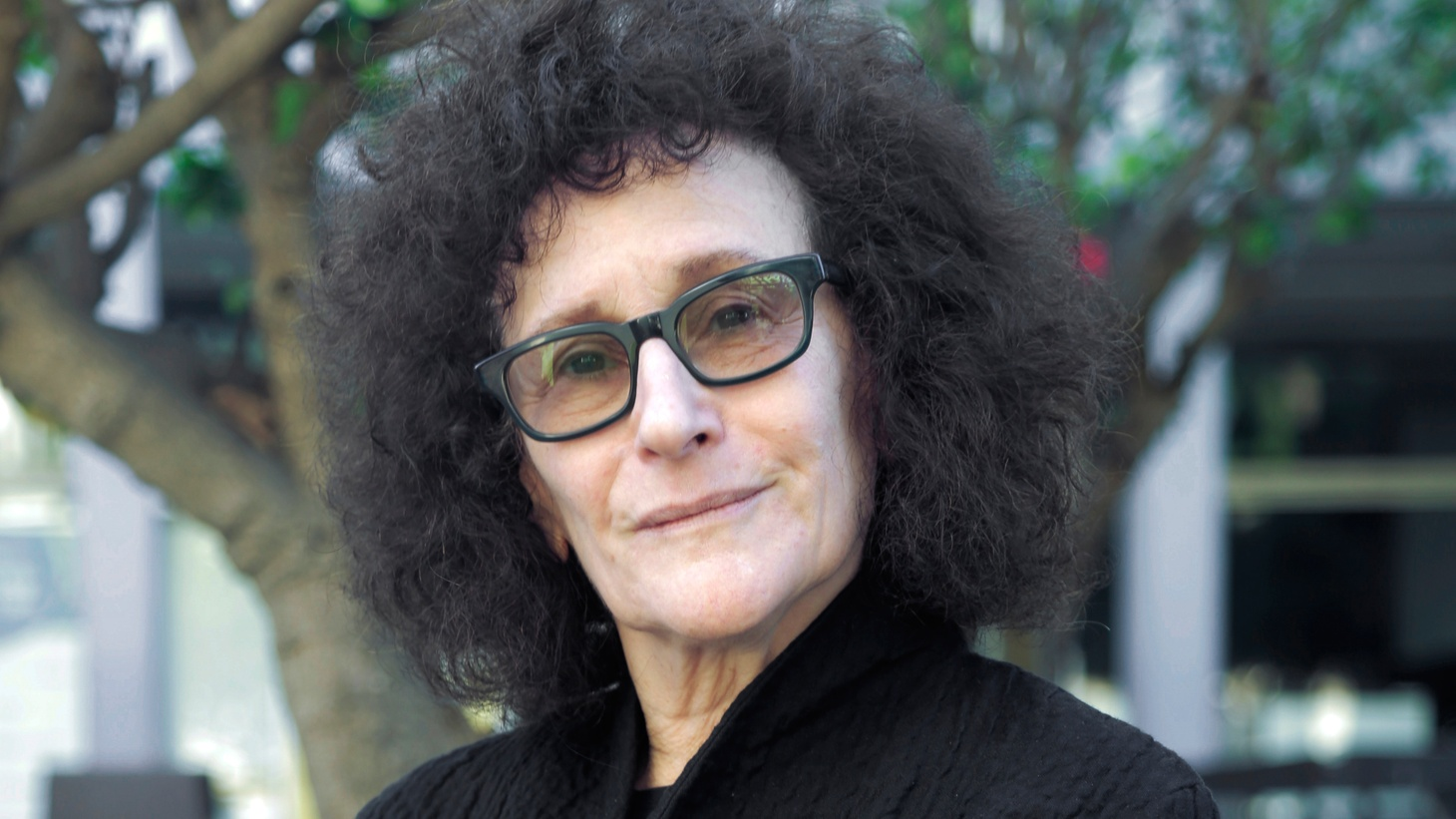 Lynne Tillman's The Complete Madame Realism and Other Stories, is a unique blend of short fiction, essays, and philosophical musings that defy categorization.