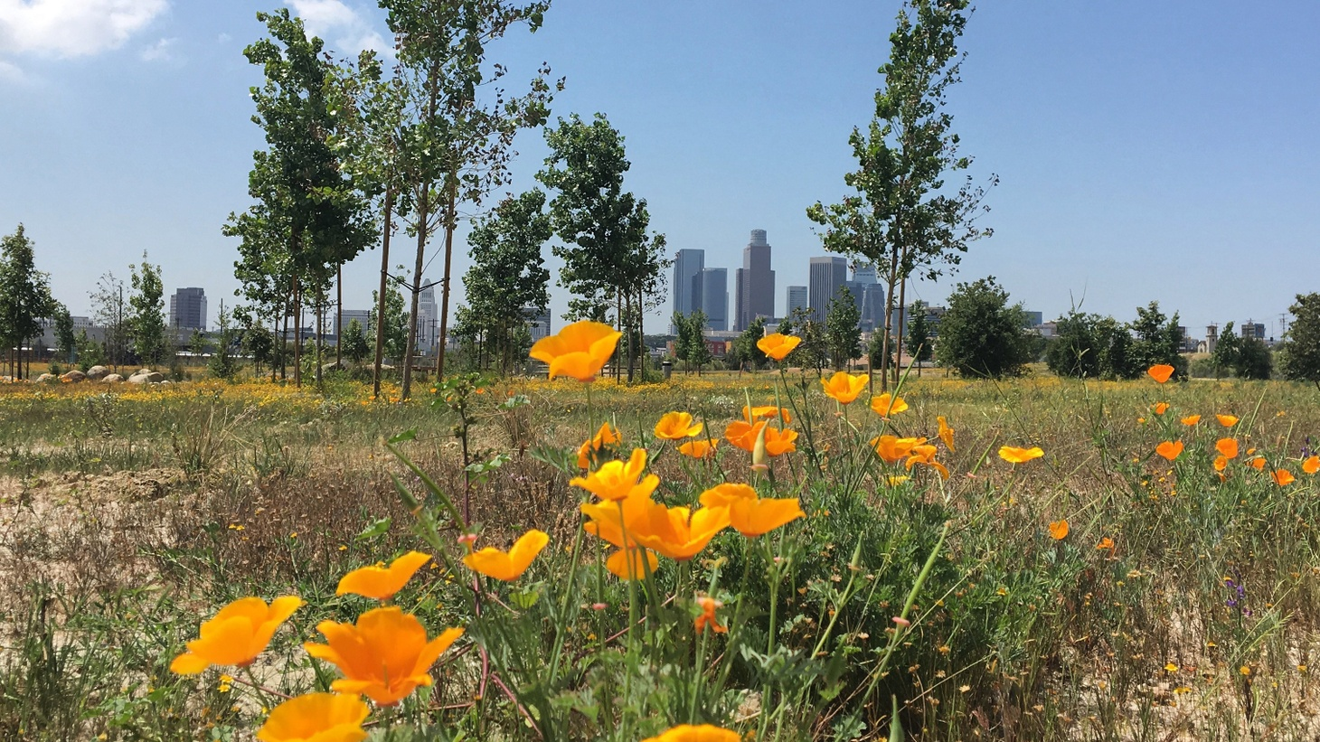 This Saturday, Los Angeles State Historic Park will celebrate its newly-renovated green space with a party that's been 16 years in the making.