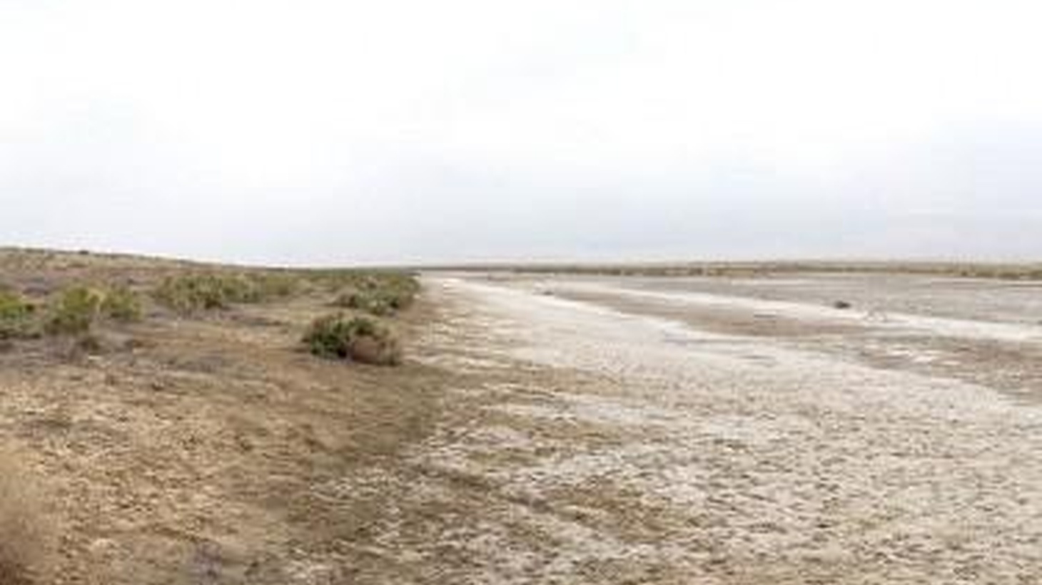 Can the Southland grow if drought is the new normal? Hadley Arnold says yes,with architecture that acts as a sponge. Plus, Dave Hickey, Maura Lucking and Gideon Brower.