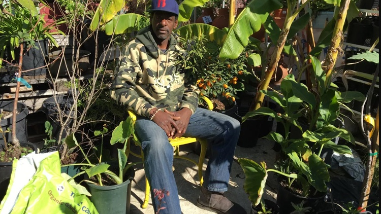 "South LA's ""gangsta gardener"" Ron Finley wants to bring locally-grown food to areas that desperately need it, and to change ideas about what it takes to make a healthy community."