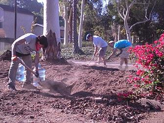 guerrillas_gardening.jpg