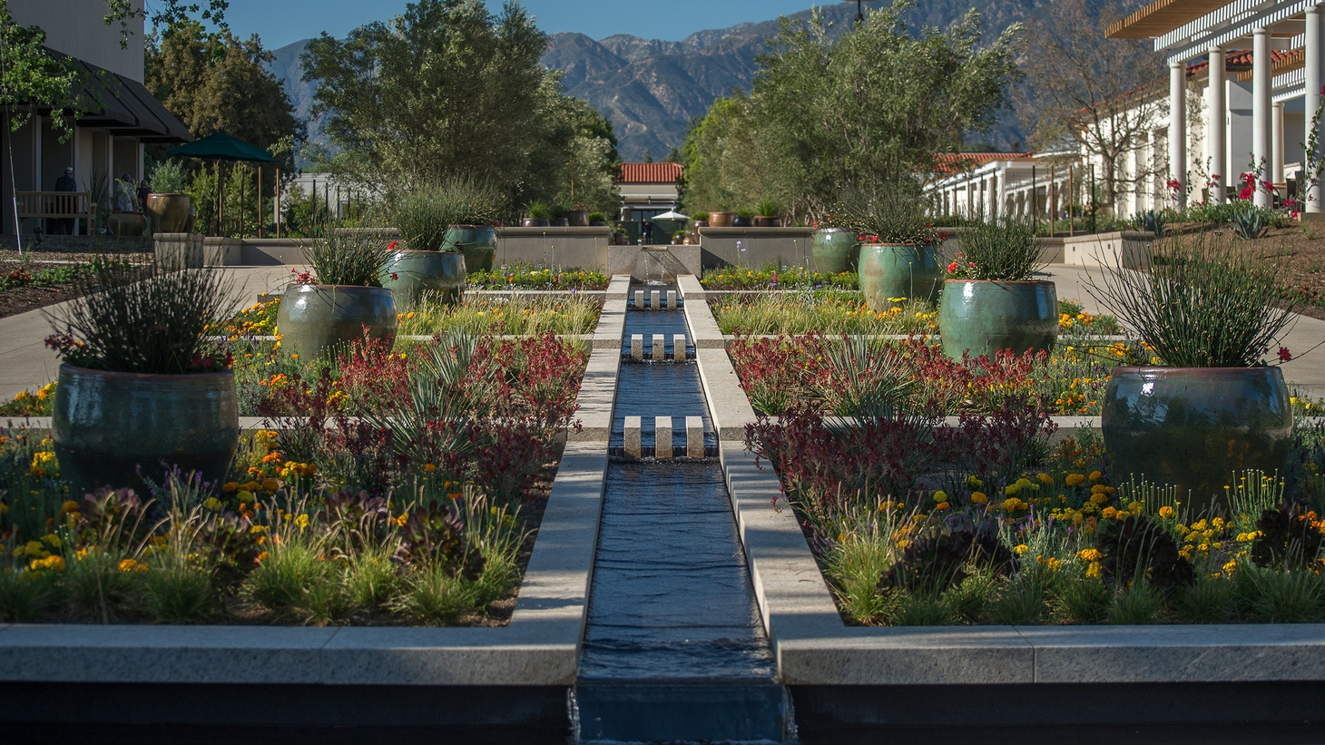 Entry garden at the Huntington Library, Art Museum, and Botanical Gardens in San Marino, founded 1919.