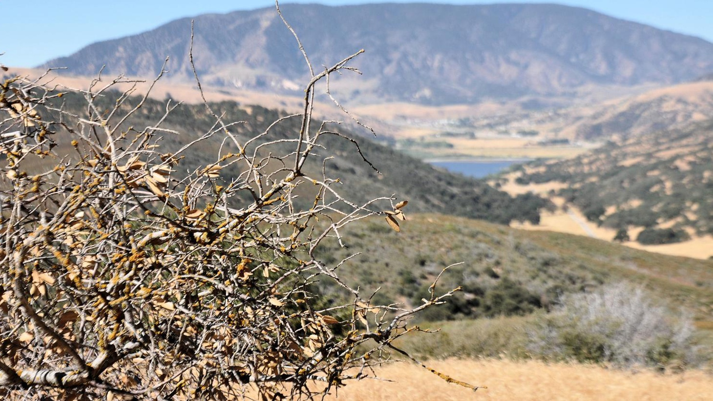 A controversial plan to develop thousands of acres cleared a major hurdle this week in Los Angeles County, securing approval from the region's planning commission. The idea is to convert 12,500 acres of open space into a new housing community.