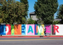 Want to paint over an ugly wall? Beautify Earth needs you.