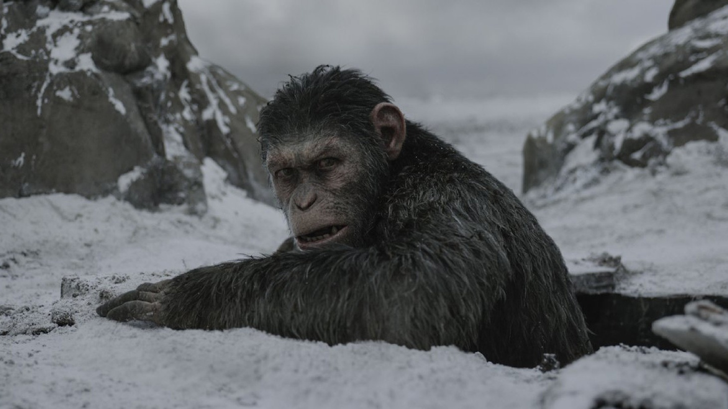If you listened to War for the Planet of the Apes with your eyes closed, the music alone would let you know you were in the presence of a grand adventure.