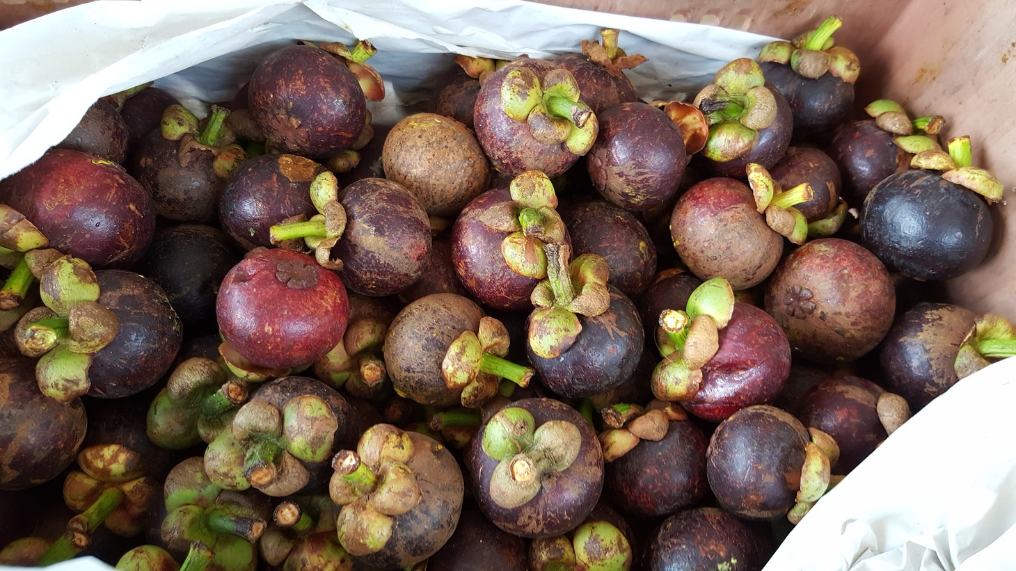 Mangosteen is a popular fruit from Thailand.
