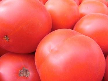 tomatoes_close.jpg