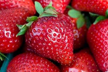 Galante Strawberry