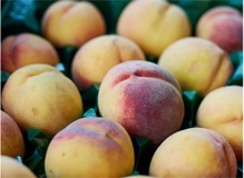 Becoming a food historian, peaches and retiring to the bakery