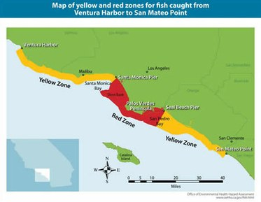 Palos Verdes Fish Contamination