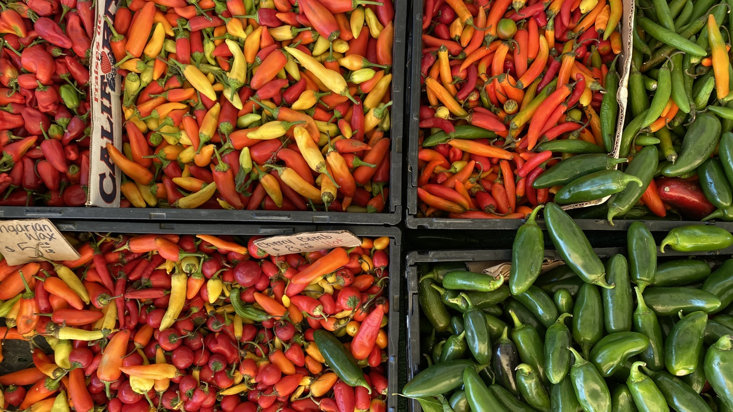 Luis Jaime of Jaime Farms started growing the Peruvian pepper, aji amarillo, at the request of chefs.