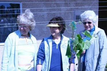 Ladies with the Vines