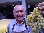 elmer_lehman_grape.jpg
