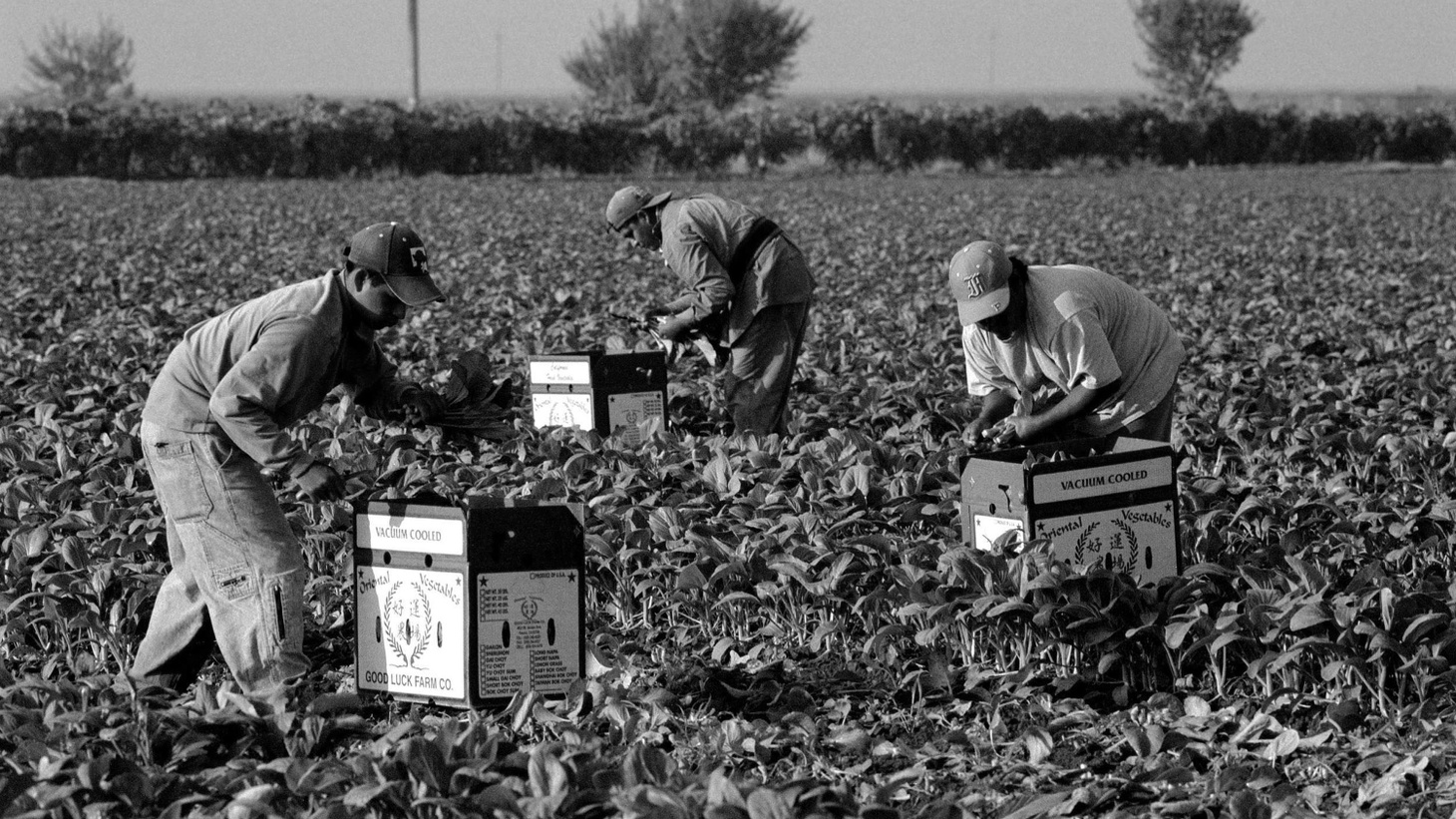 Farm workers in Fresno, California are experiencing all sorts of challenges during this pandemic.