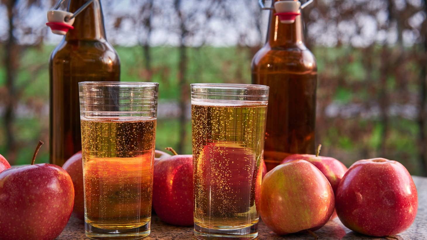 Balancing tannins, sweetness, and acidity, cider making can be as complex as wine and can be paired with food in the same way.