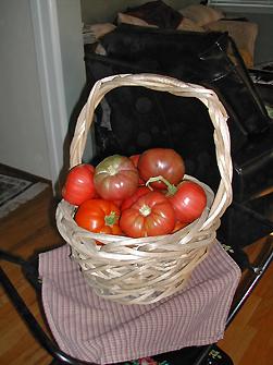 red_tomatoes.jpg