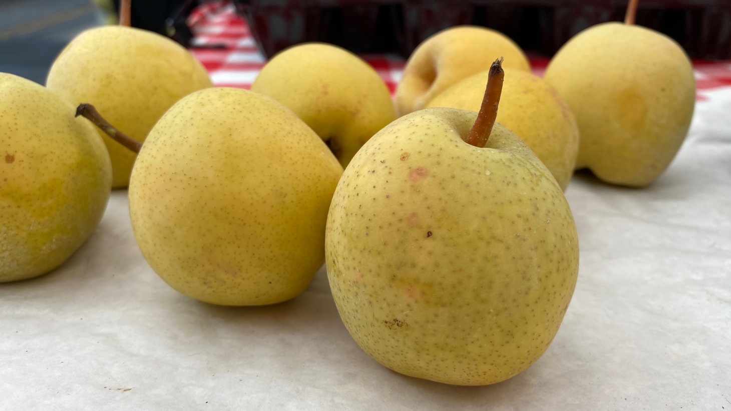 The acidity makes the Monterrey pears from Terry Ranch unique.