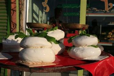 Afghani Cheese