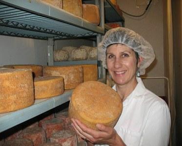Pholia Cheese