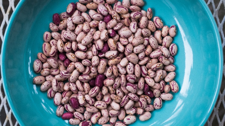 """""""There is literally no downside to eating beans,"""" says  Meghan McCarron  . She rounded up her favorite bean varieties and obsession with Rancho Gordo in her   latest story  ."""