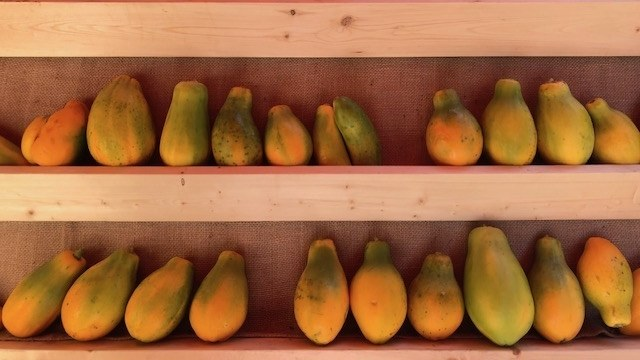 Tropical fruit in the middle of winter at the Santa Monica Farmers' Market.