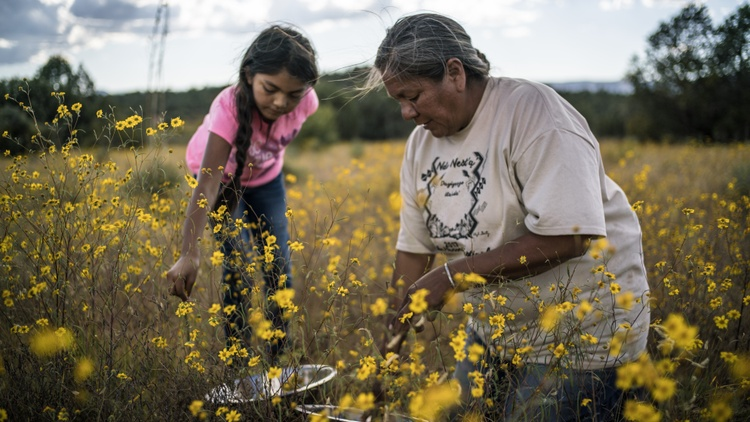 """As the nation heads down a road of recovery, Good Food looks at healing, which is at the center of the new film, """"Gather."""""""