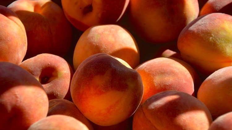 Stone fruit season is in full effect, which for many Angelenos means plenty of time spent standing over the sink eating juicy peaches or nectarines.