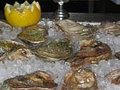 malpeque_oysters.jpg