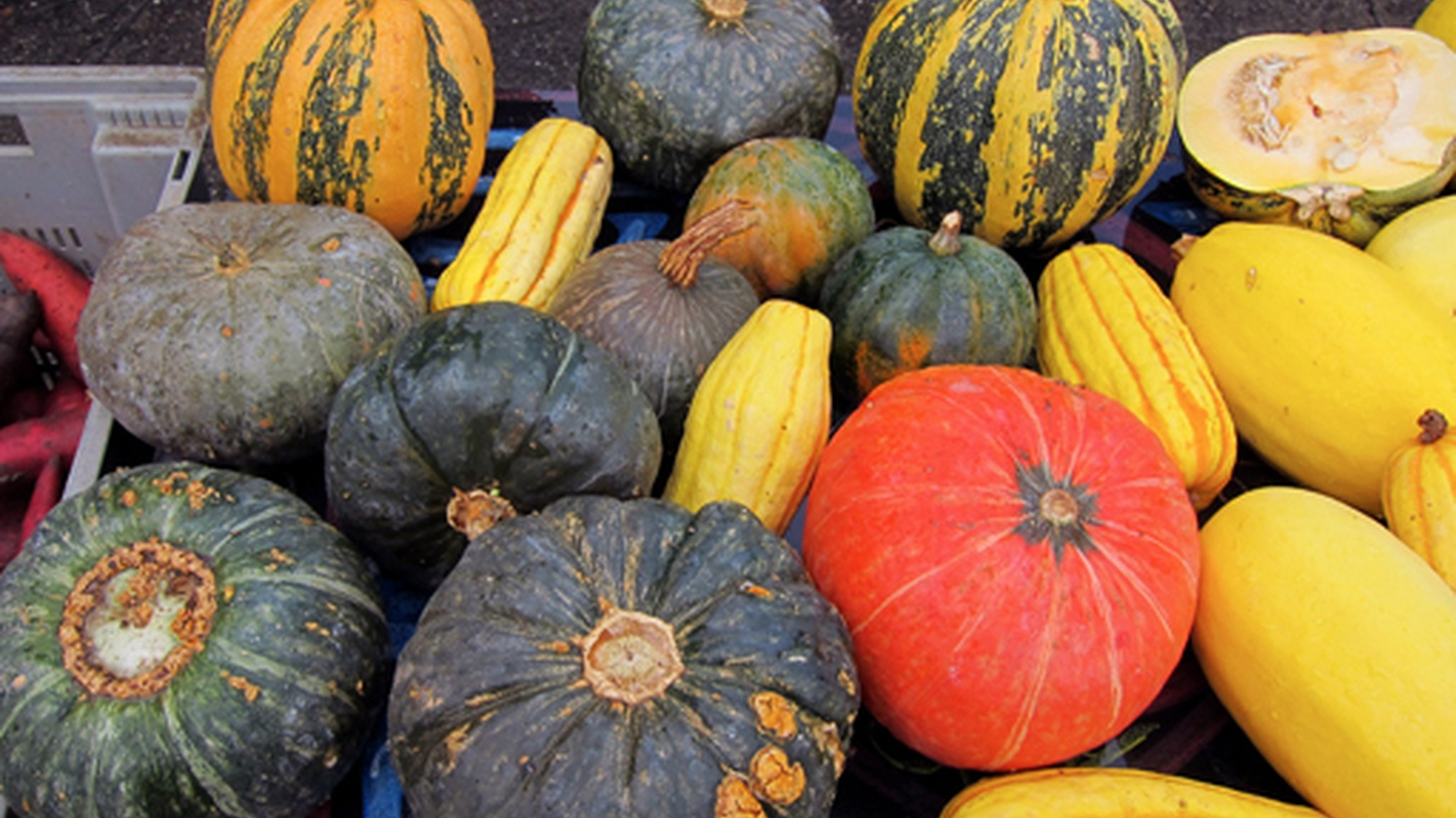 There are various different types of seasonal winter squash.