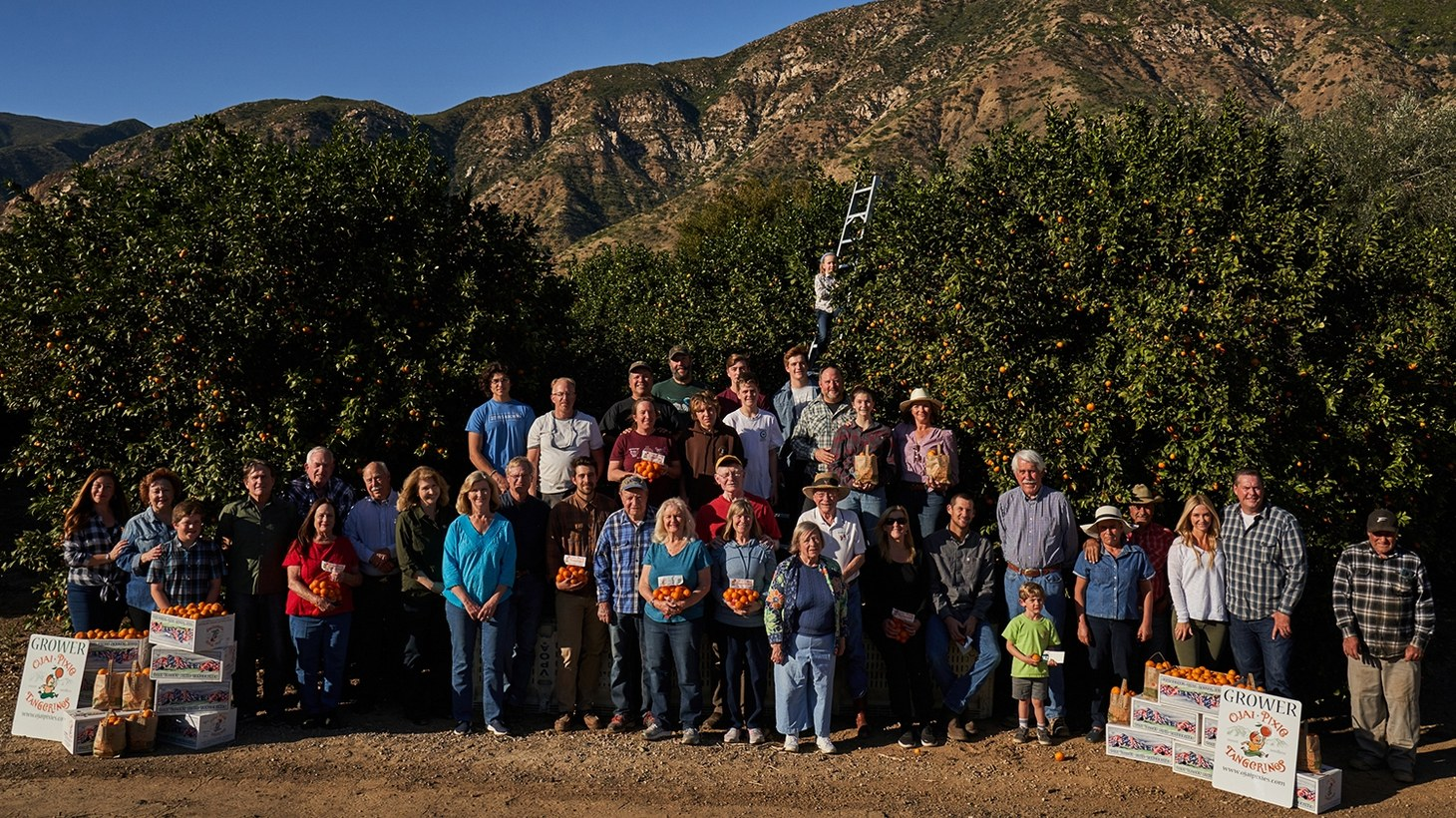 Ojai pixie growers in early March 2020 at Friend's Ranch before the shutdown.