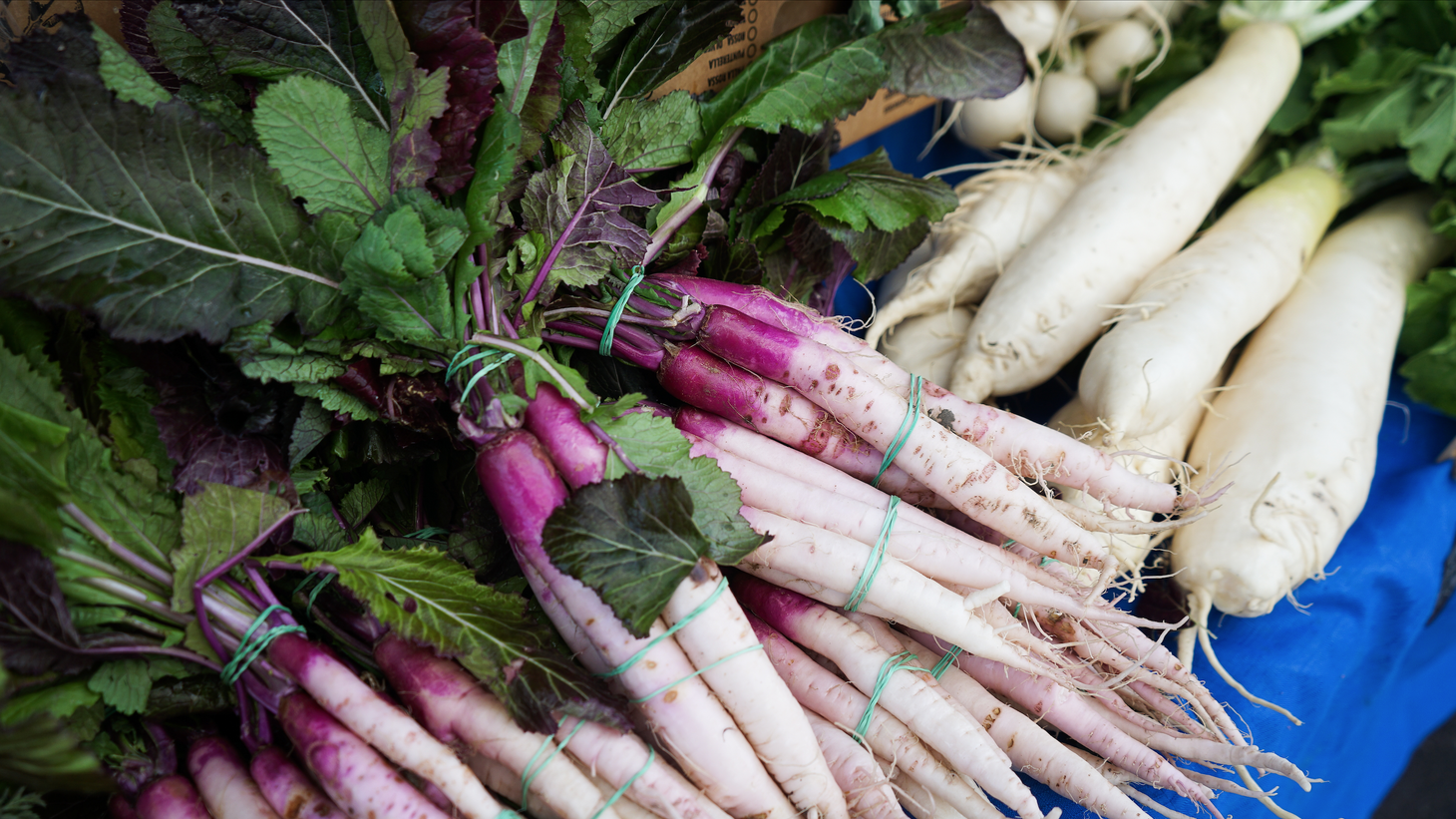 County Line Harvest at the Santa Monica Farmer's Market is offering two Japanese varieties of turnips, including the hinona kabu, an elongated turnip which is popular for pickling and has a mustard green top.