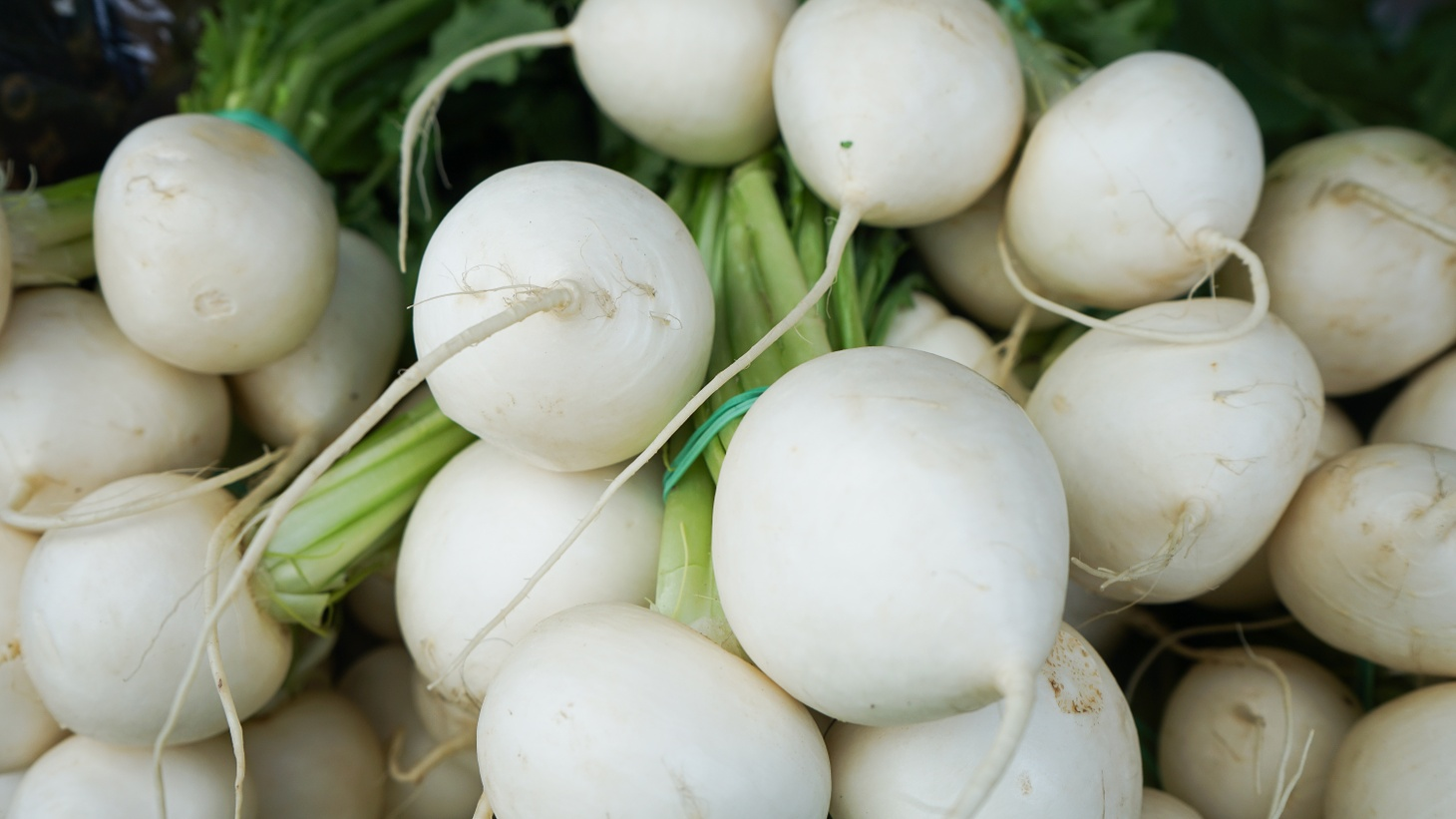 """County Line Harvest has two Japanese varieties of turnips on the table at the market. The """"Tokyo turnips"""" have a golf ball shape, and their size and shape can affect flavor."""
