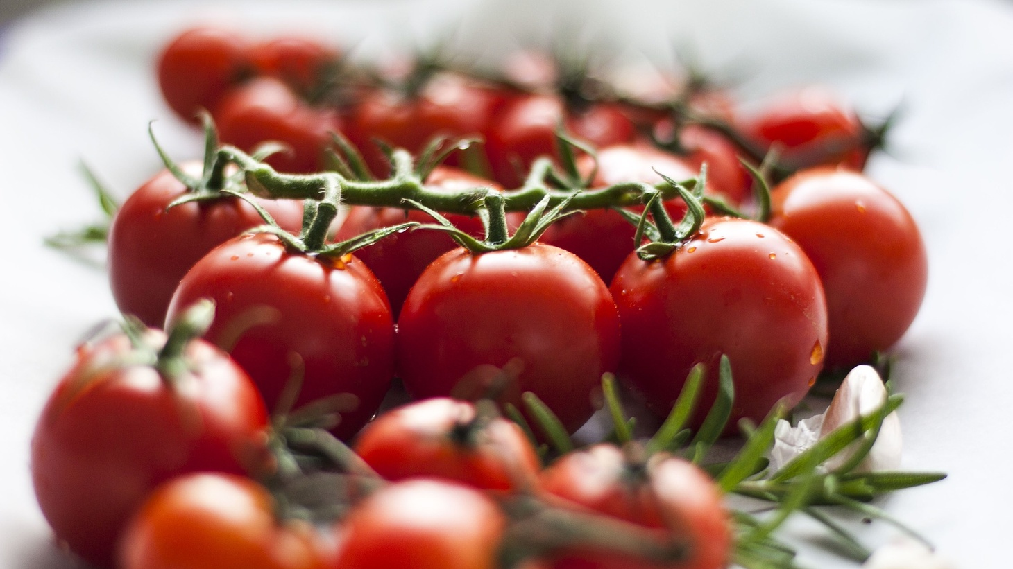 Backyard gardeners across the Southland will flock to Tomatomania events to shop hundreds of varieties of tomato seedlings.