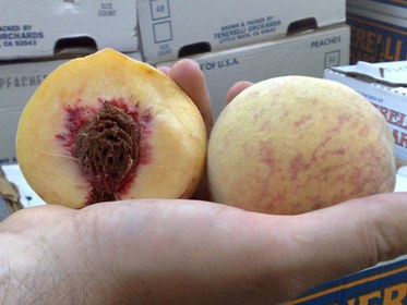 Indian Blood Peach