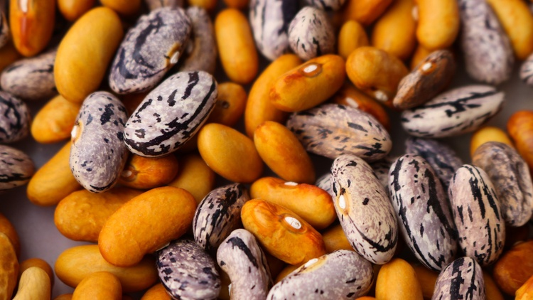 Market correspondent   Gillian Ferguson   catches up with Larry Kandarian of Kandarian Organic Farm about the popularity and the upsurge in bean sales.