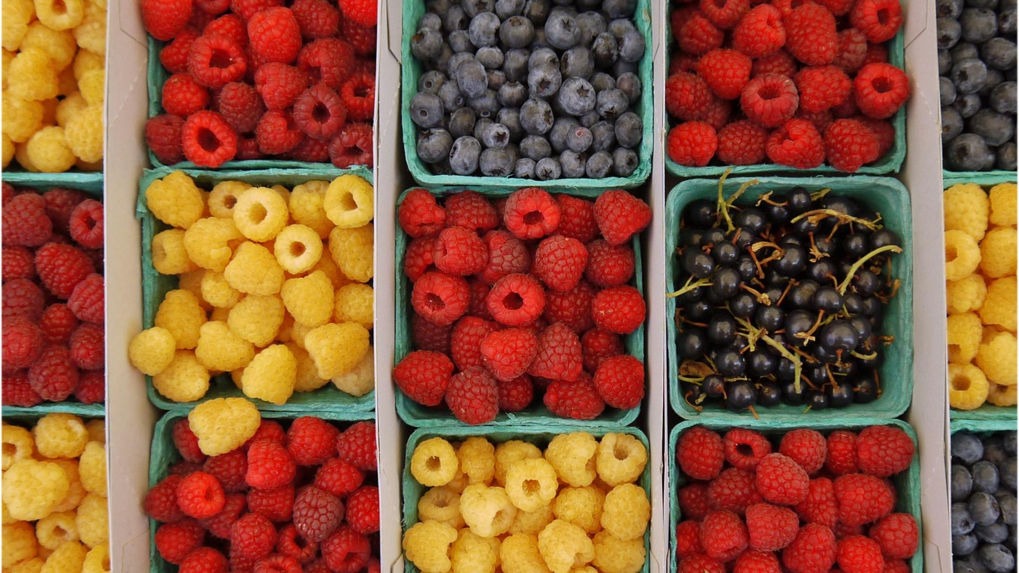 Various berries on display at the Santa Monica Farmers Market.