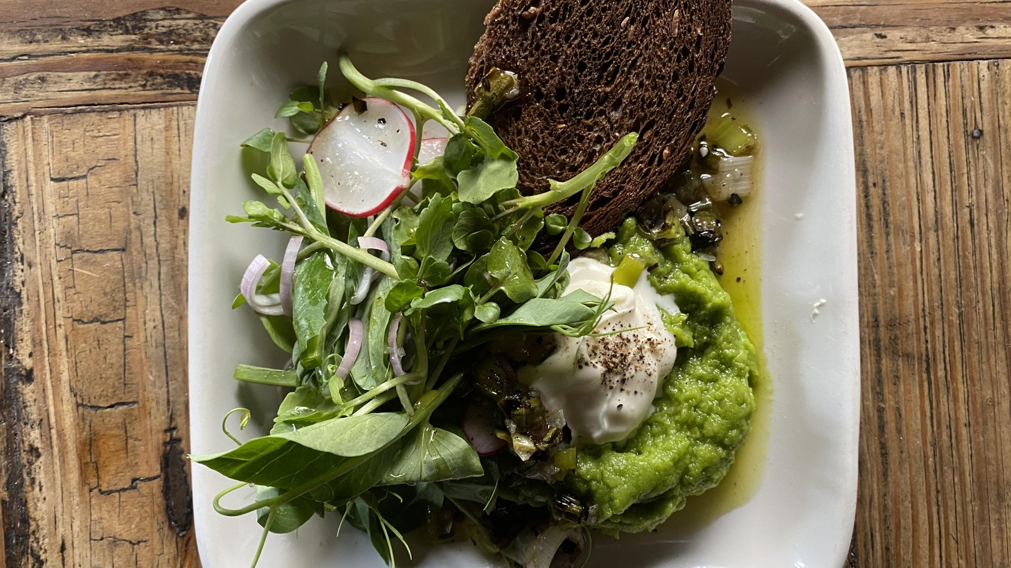 A dish of fava purée, crème fraîche, pea shoots, radish, charred scallions and pumpernickel is being served by Chef Javier Espinoza at a.o.c.