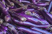 chinese_eggplant.jpg