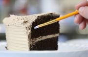 cake brush.jpg