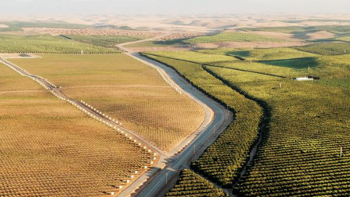 Water may be the essence of life but it's subject to near-constant misuse. Journalist Mark Arax profiles a couple running a water monopoly in the Central Valley.