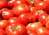 Tomatoes, Grated and Baked - Video Podcast