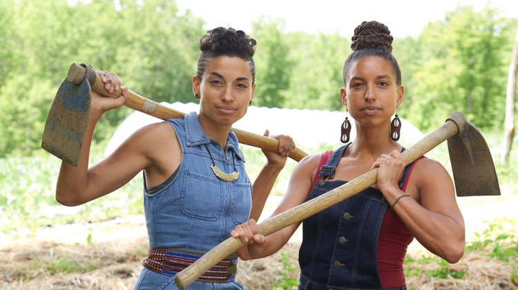 'We Are Each Other's Harvest': African American farmers, land, and legacy