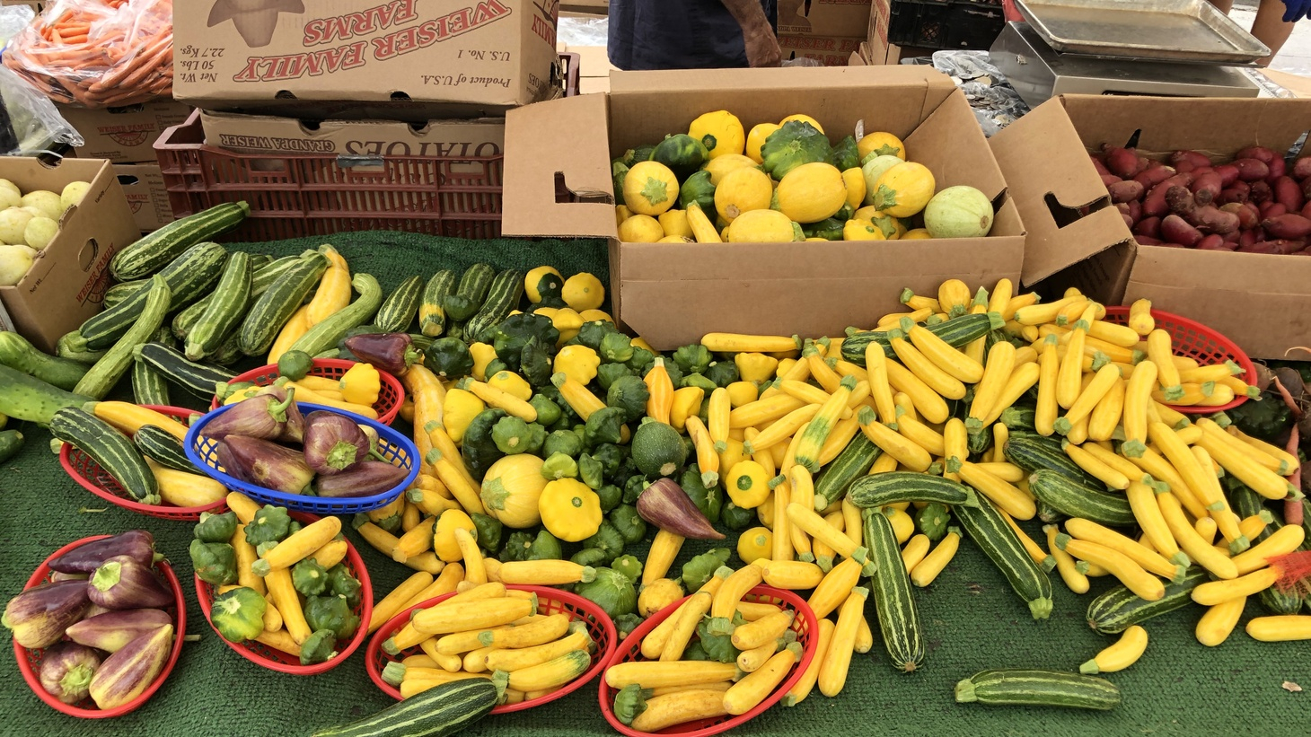 Summer squash from Weiser Family Farms.