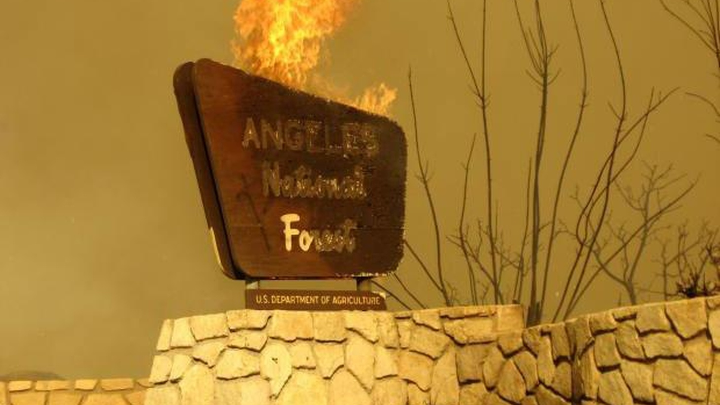 A cooling trend in this weekend's weather forecast is the first realpiece of good news since fires began to dominate life here more than aweek ago. The fire still sweeping through the Angeles National Forest has been a monster, atmospherically and historically...