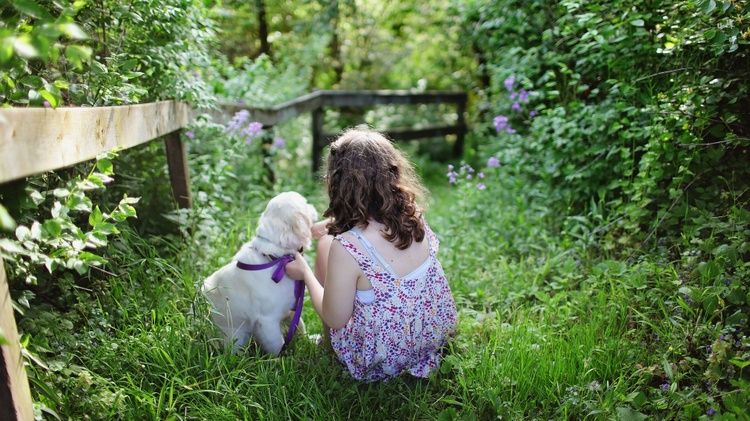 Moments of Serenity: Pets