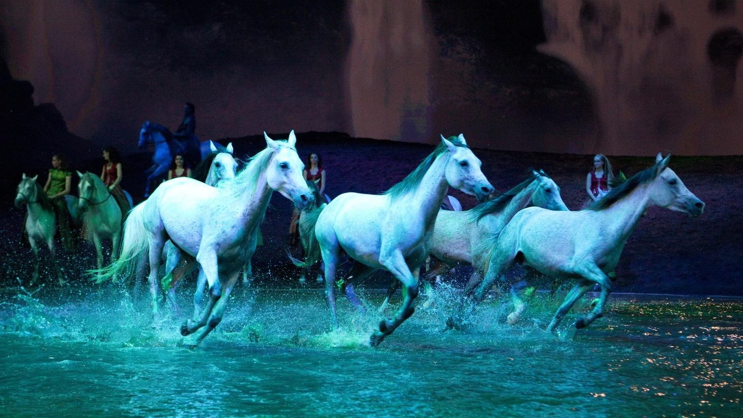 "Calling Cavalia's ""Odysseo"" a horse circus doesn't quite do it justice. Think Cirque du Soleil meets equestrian event."